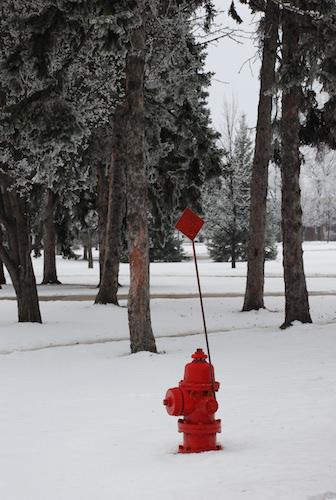 Lovely Winter Scenes | Summertime Fragments