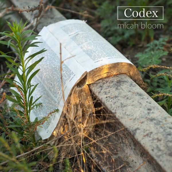 Codex cover digital press copy