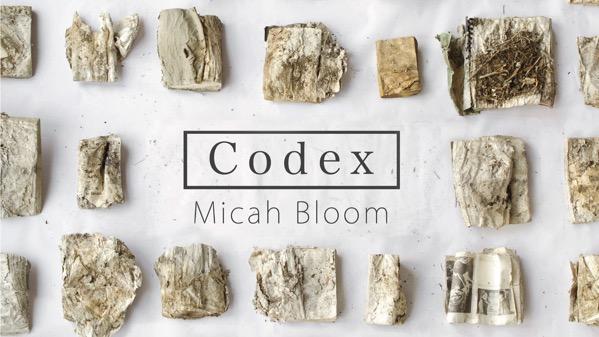 Codex Tradebook Cover Cropped